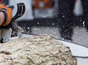 Träd i fall – Västerås företag